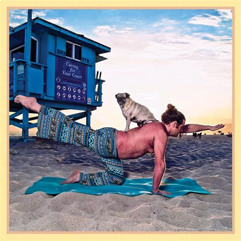 pug rescue cape town ommm g now that s a real downward pose comedian creates calendar