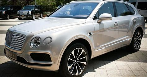 bugatti suv price bentley 229k suv world s most luxurious bentley usa ceo