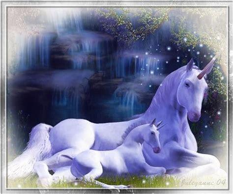 imagenes de unicornios y caballos universo de fantasia unicornios