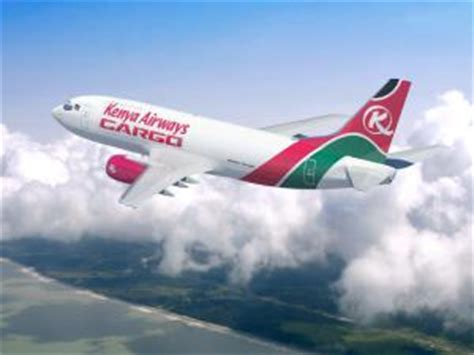 Tanzania airline announces new routes   Transport World Africa