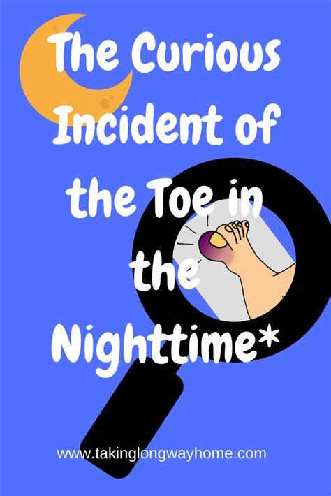 curious incident of the in the nighttime chicago taking the way home the curious incident of the toe in the nighttime