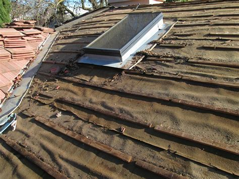 Tile Roof Repair Your Carpiocherebin