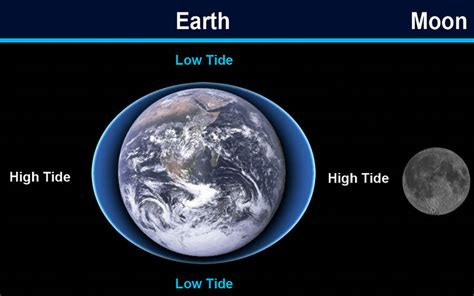tide diagram tides read earth science ck 12 foundation