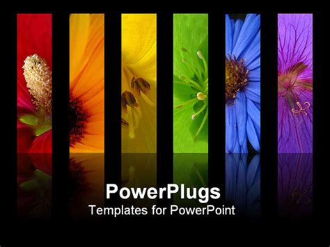 ppt title slide template powerpoint template rainbow of flowers collage including