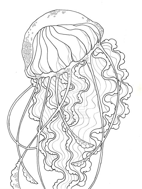 jellyfish coloring page for adults jellyfish coloring pages 5643
