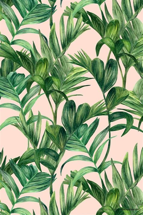 botanical print wallpaper 25 best ideas about tumblr wallpaper on pinterest
