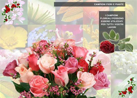 cioni fiori e piante costafotoceramica it