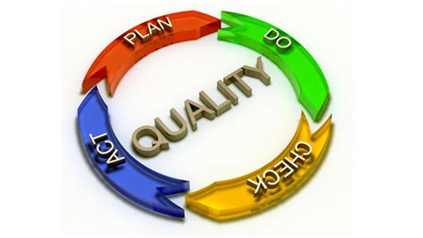 qualita modello organizzativo 231 e responsabilita sociale