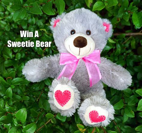 Sweeties Sweepstakes - sweeties sweetie bear and amazon holiday giveaway