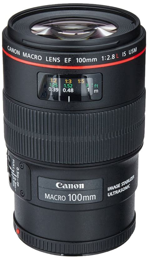 best canon lens 10 best macro lenses for canon dslrs in 2017 ratings