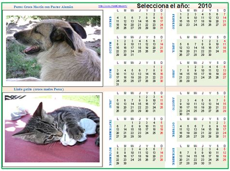 Ccisd Calendar 2015 Plantilla De Agenda Diaria Para Imprimir Bed Mattress Sale