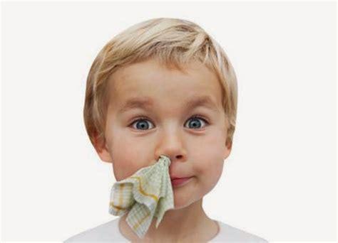 nose bleed 10 ways to stop nose bleed thrombocytes
