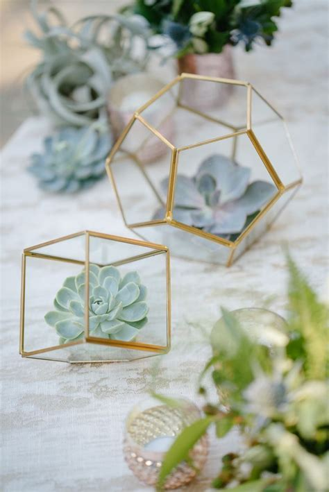 54 best Styling with Succulents images on Pinterest