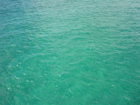 the sea colors sea color sorting fandom powered by wikia