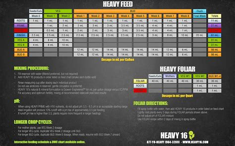 heavy 16 feeding schedule the grow show