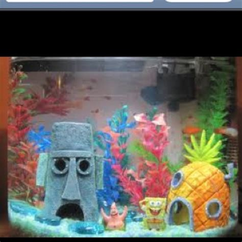My Fish Tv New Products Goldfish Mini Tank Filter Aquarium Mini 7 best images about spongebob on kid home and don t care