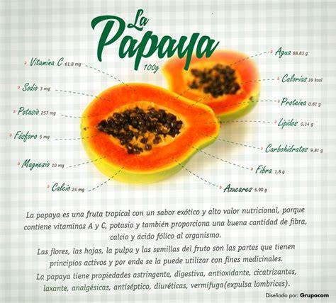 propiedades medicinales de la papaya botanica la papaya y sus propiedades