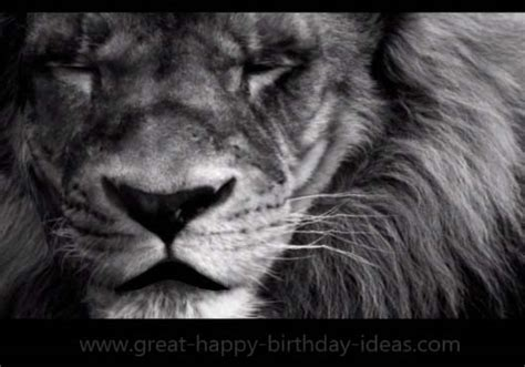 mighty lion birthday   specials ecards greeting cards