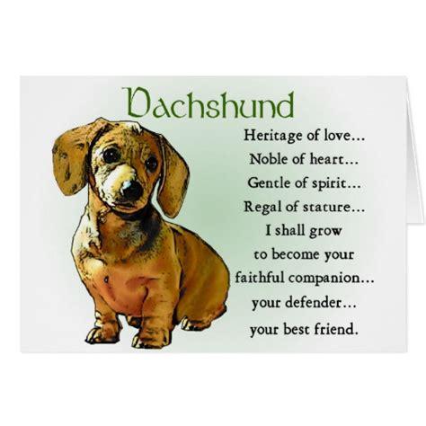weiner gifts dachshund birthday meme breeds picture