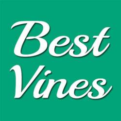 best vines youtube