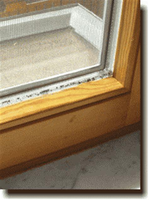 Schimmel Am Fenster Silikon by Alles 252 Ber Schimmel Und Dessen Vermeidung In Der Wohnung