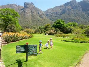 What Is A Botanical Garden Kirstenbosch National Botanical Gardens Molly In Cape Town