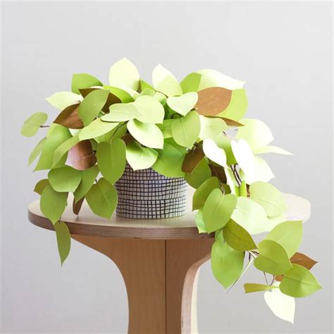 Paper Plant - plants made from paper by corrie beth hogg