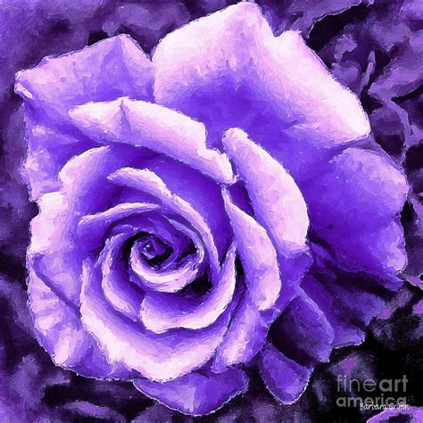 Roses Duvet Cover Lavender Rose With Brushstrokes Photograph By Barbara Griffin