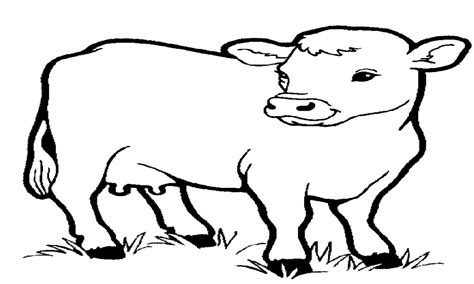 farm animals coloring pages preschool farm coloring sheets for preschool pages animals or