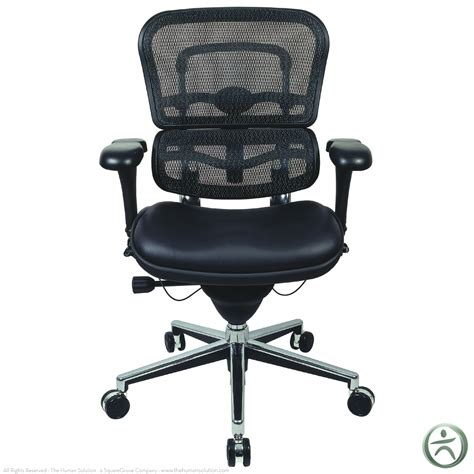 Ergo Ergothe Collection by Raynor Ergohuman Chair Mesh Chair With Leather Seat