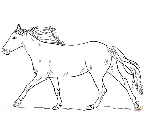 running horse coloring page free printable coloring pages