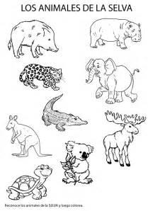 Imagenes Para Colorear Animales De La Selva | imagenes de animales de la selva para colorear selva