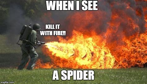Killing Spiders Meme - flamethrower imgflip