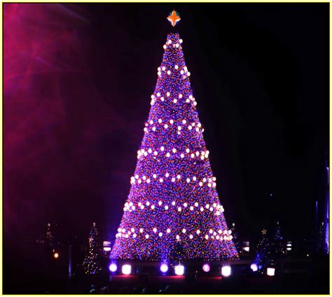 purple christmas tree decorations home design ideas