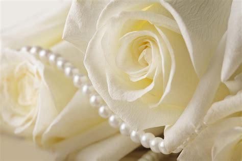 Wedding Altar Rental – Una boda en el campo, con puertas
