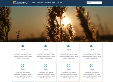 age themes joomla more things to know about joomla 4 age themes