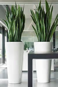 Tall Turquoise Floor Vase 24 Floor Vases Ideas For Stylish Home D 233 Cor Shelterness