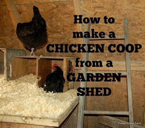 chicken coop   garden shed timber creek farm
