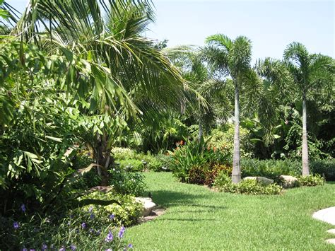 tropical landscape tropical garden landscape images izvipi