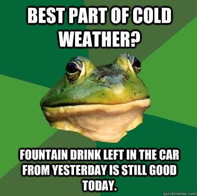 Funny Cold Weather Memes - best part of cold weather fountain drink left in the car