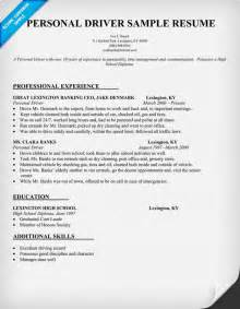 resume format resume sles driver