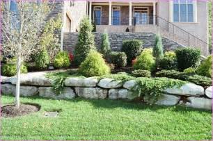 Landscape Ideas No Grass Front Yards Front Yard Landscaping Ideas No Grass Home Design Ideas