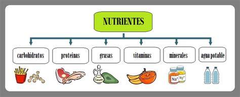 proteinas y minerales gu 237 a pr 225 ctica de los 5 grupos b 225 sicos de alimentos para