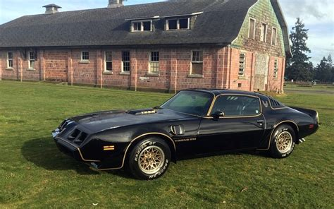1979 pontiac trans am bad bandit 1979 pontiac trans am