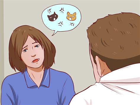 how to a to get along with cats how to encourage cats to get along with each other