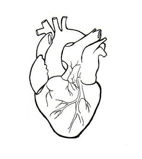 tattoos on the heart pdf human embroidery anatomical line simple