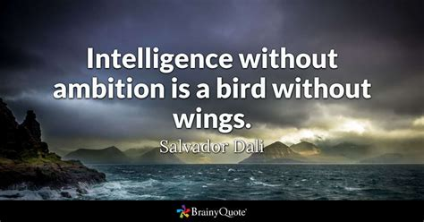 quotes about ambition intelligence without ambition is a bird without wings