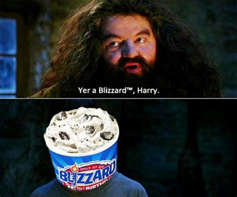 You Re A Wizard Harry Meme - image 117392 you re a wizard harry know your meme