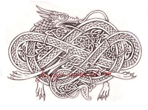 celtic dragon v by feivelyn on deviantart
