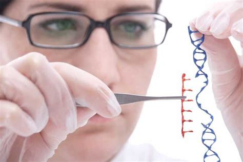 Genetic Engineering scope of genetic engineering also provide details about